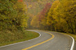 Curved Road with Autumn Colors