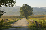 Fototapety Country Road Great Smoky Mountains