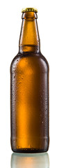 Brown bottle of beer