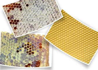 des gaufres de miel sur des photos courbes