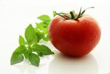 Fototapety Tomate et basilic