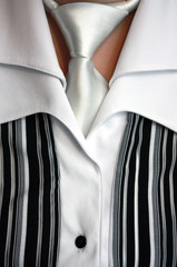 Female strict blouse with a  necktie