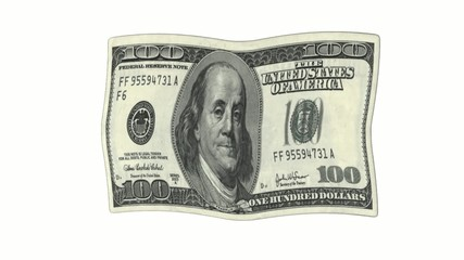 Fahne 100 Dollar