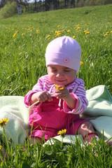 Kleinkind auf der Wiese,Allergien,Pollen,Bauernhof,Natur