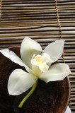 bowl of orchid on bamboo mat
