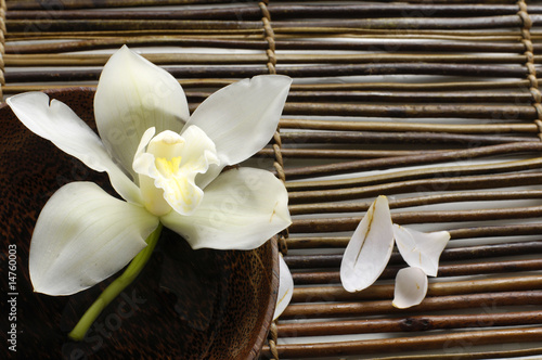 bowl of orchid, petal on bamboo mat © Mee Ting