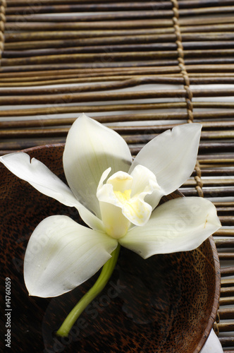 bowl of orchid on bamboo mat © Mee Ting