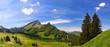 Fototapeten,landschaft,alpen,natur,frühling