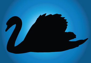swan with background - vector