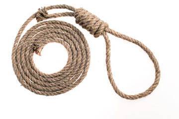 Noose on white background