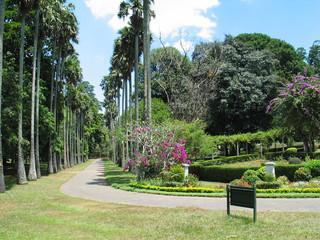 Sri Lanka Giardini