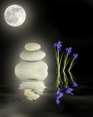 Zen Garden Under Full Moon