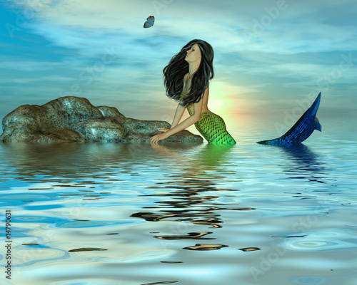 Plexiglas Zeemeermin Mermaid on Rocks