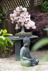Buddha vor Bonsai