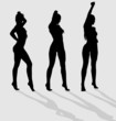Vector silhouettes of three sexy female on gray background.