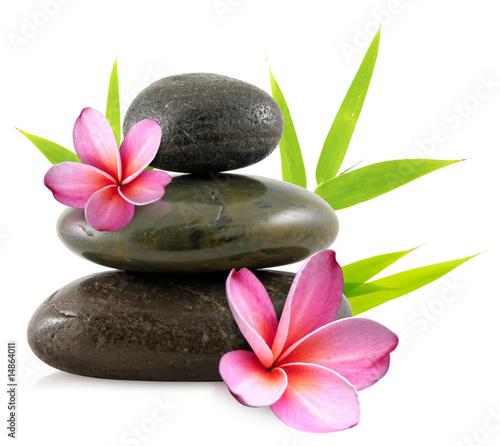 fleurs de frangipanier et galets zen