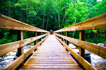 Scary Wooden Bridge Crossing