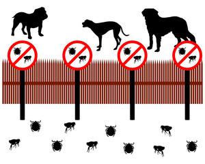 Hunde hinter Zaun zum Schucken gegen Zecken und Flöhe