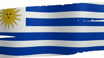 Pennello Uruguay