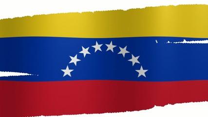 Pennello Venezuela