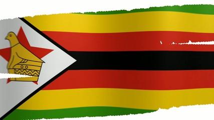 Pennello Zimbabwe