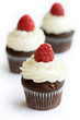Chocolate and raspberry cupcakes