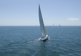 Sailboat racing on Ocean, back view