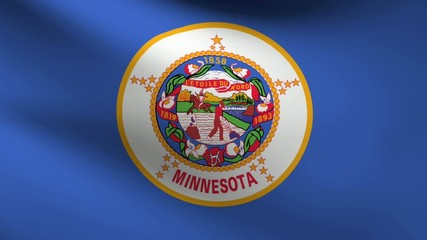 Minnesota flag