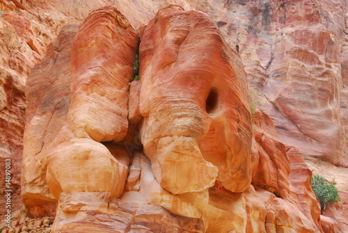 elephant shaped rock in petra canyon jordan