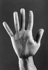 Palm of hand, b&w, close-up