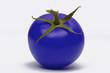 tomate bleue