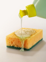 cleaning sponge and fluid