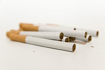 tabaco 7