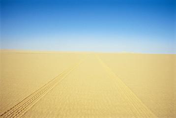 Tire Tracks Through the Desert