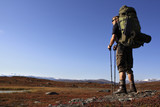 Hiker on the Kungsleden
