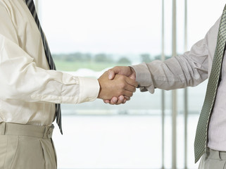 Businessmen Shaking Hands in front of window, side view, close-up