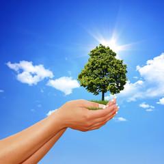 Schutz für die Umwelt