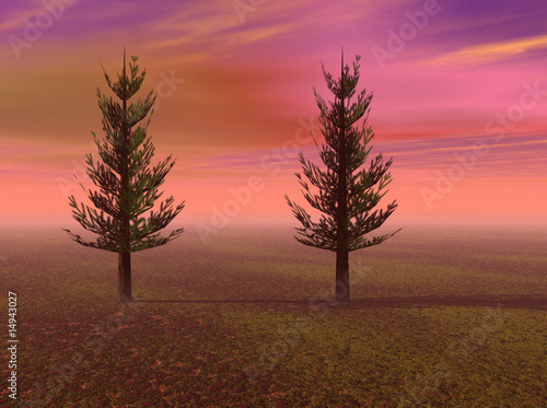 Pine Trees in a Meadow