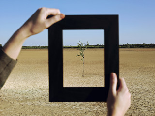 Woman framing tree in desert, close-up of hands and frame