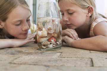 Two girls 7-9, 10-12 looking at shells in jar, close-up