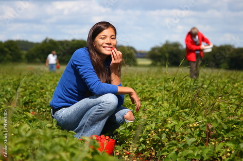 Leinwandbild Motiv Picking strawberries