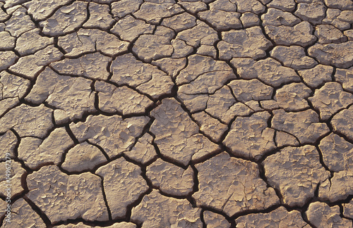 Cracked earth in desert, full frame