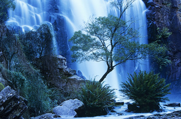 Australia, waterfall in forest