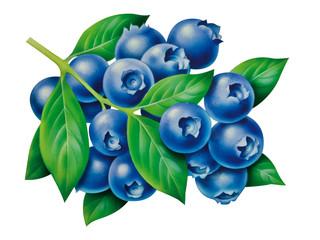 Blaubeeren
