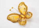 butterfly brooch poster