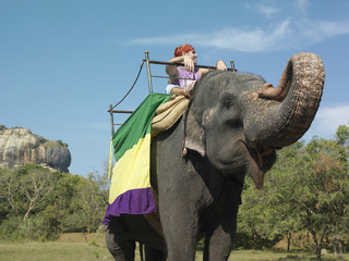 Young woman riding on elephant, trees in background