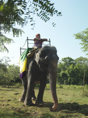 Young woman riding elephant, leaning, looking at view