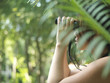 Young woman using binoculars in tropical forest, side view