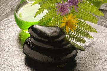 Terapia delle pietre