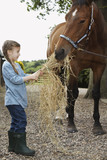 Girl 5-6 feeding horse hay, outdoors